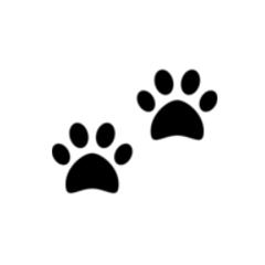 paw-large